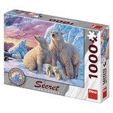 Dino Lední medvědi 1000 secret collection puzzle